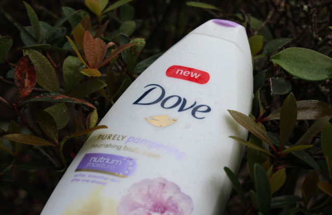 dove purely pampering sweet cream and peony body wash