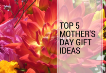 top 5 mother's day gift ideas under $40