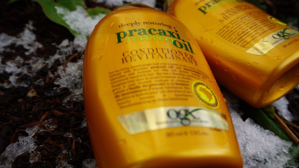 ogx pracaxi recovery oil conditioner