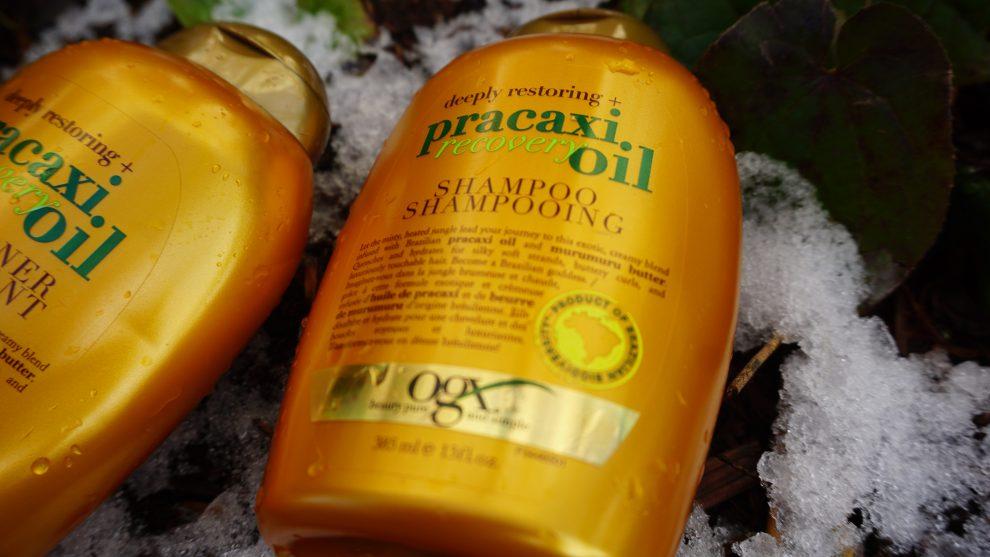 ogx pracaxi recovery oil shampoo